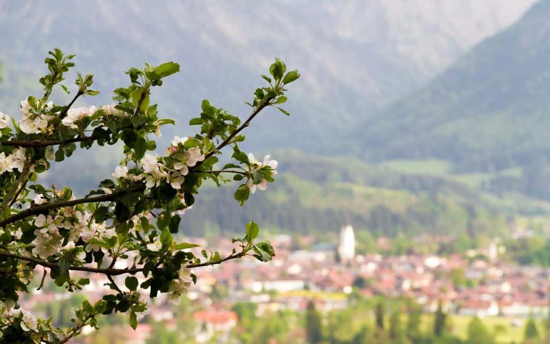 Frühling Urlaub in Oberstdorf